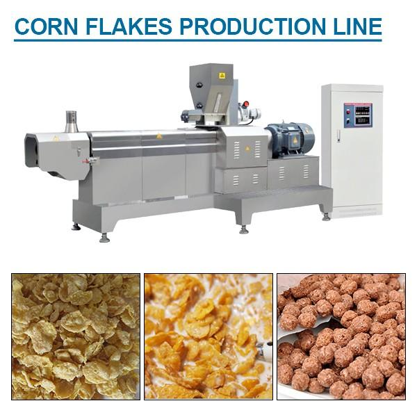 100-200kg/h Capacity Excellent Quality Corn Flakes Making Machine With Flour As Main Materials #1 image