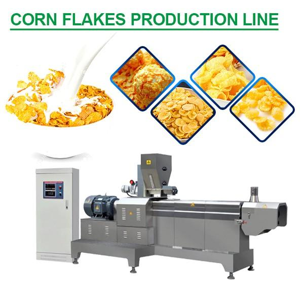 50-100kg/h Capacity Multifunction Corn Flakes Production Line For Puff Snacks #1 image