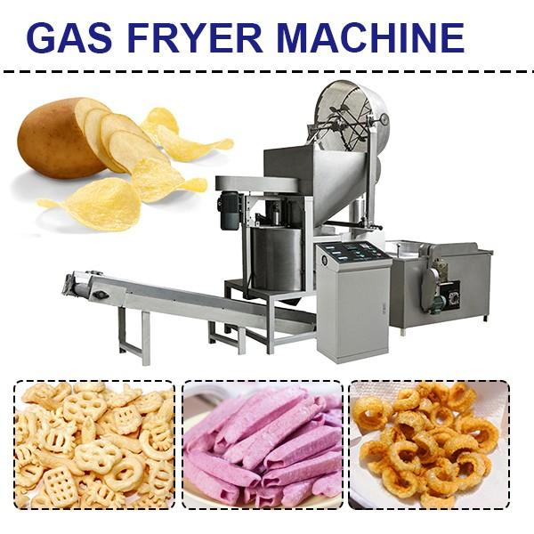 Hot Sale Full Automatic Gas Fryer For Fruit Chips And Vegetables #1 image